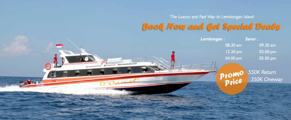 DCamel Fast Ferry