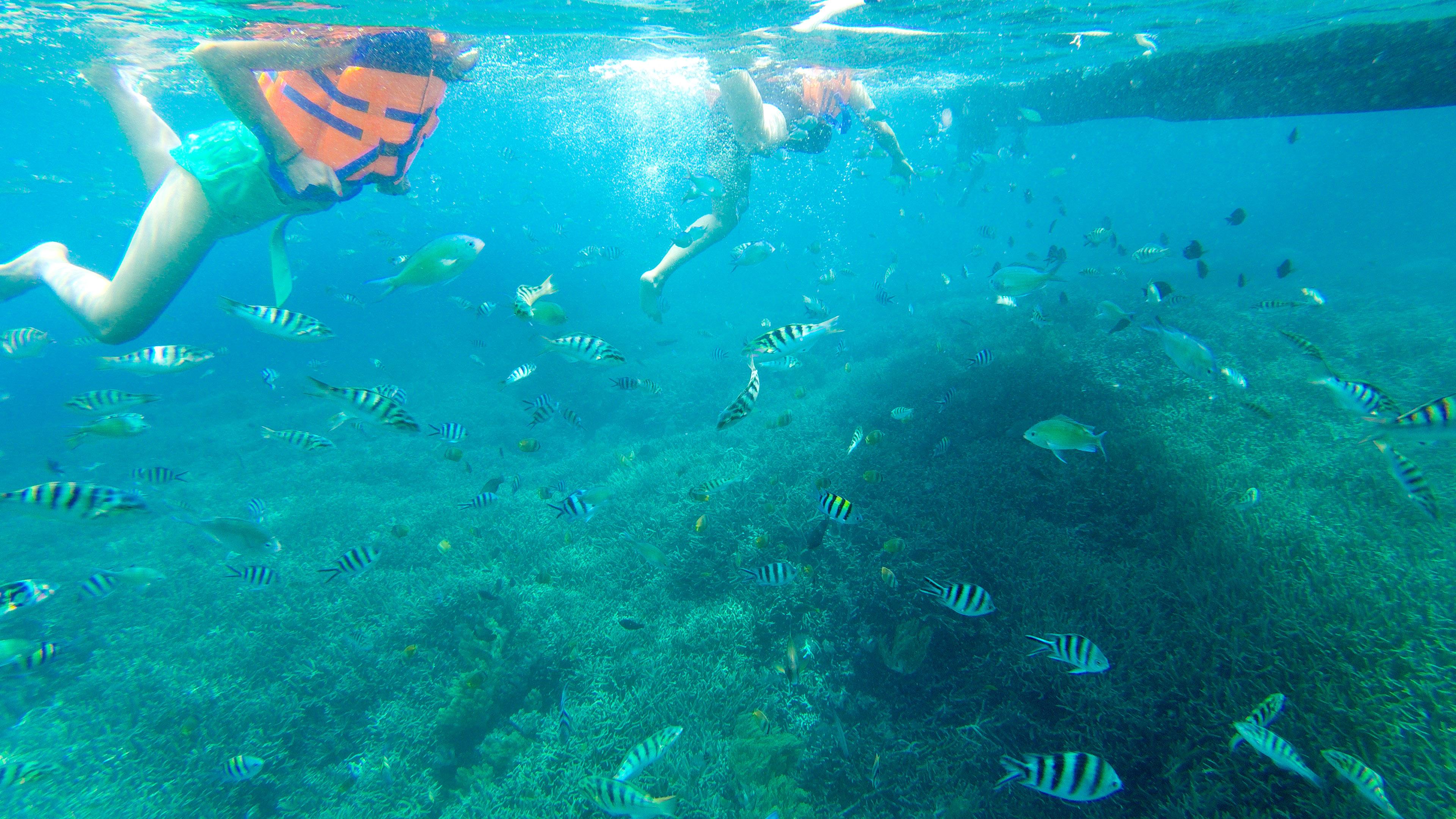 Fast Boat Lembongan, Sanur to Lembongan, Holiday Lembongan, Boat Lembongan, Sanur, Nusa Lembongan, Snorkeling Lembongan, Fast Boat Murah, Liburan Lembongan, Cheap Fast Boat Lembongan